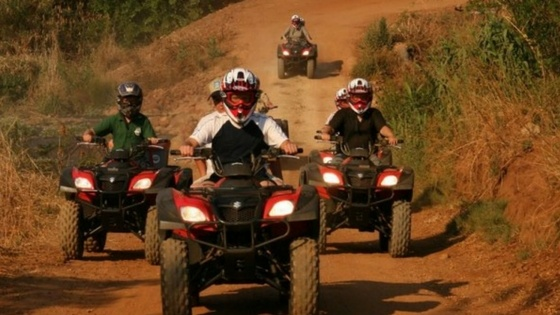 Hollybrooke farm offers outdoor adventures for the whole family.