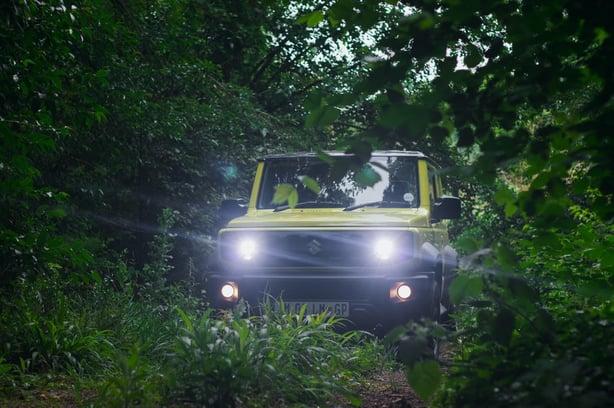 Green Suzuki Jimny in the forest