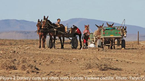 Tankwa Padstal | Suzuki Epic Road Trip