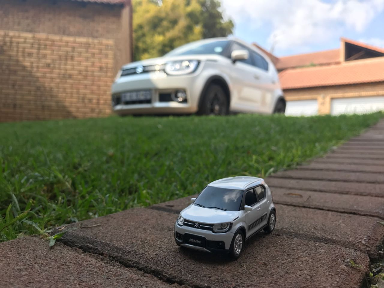 Suzuki Ignis with model car