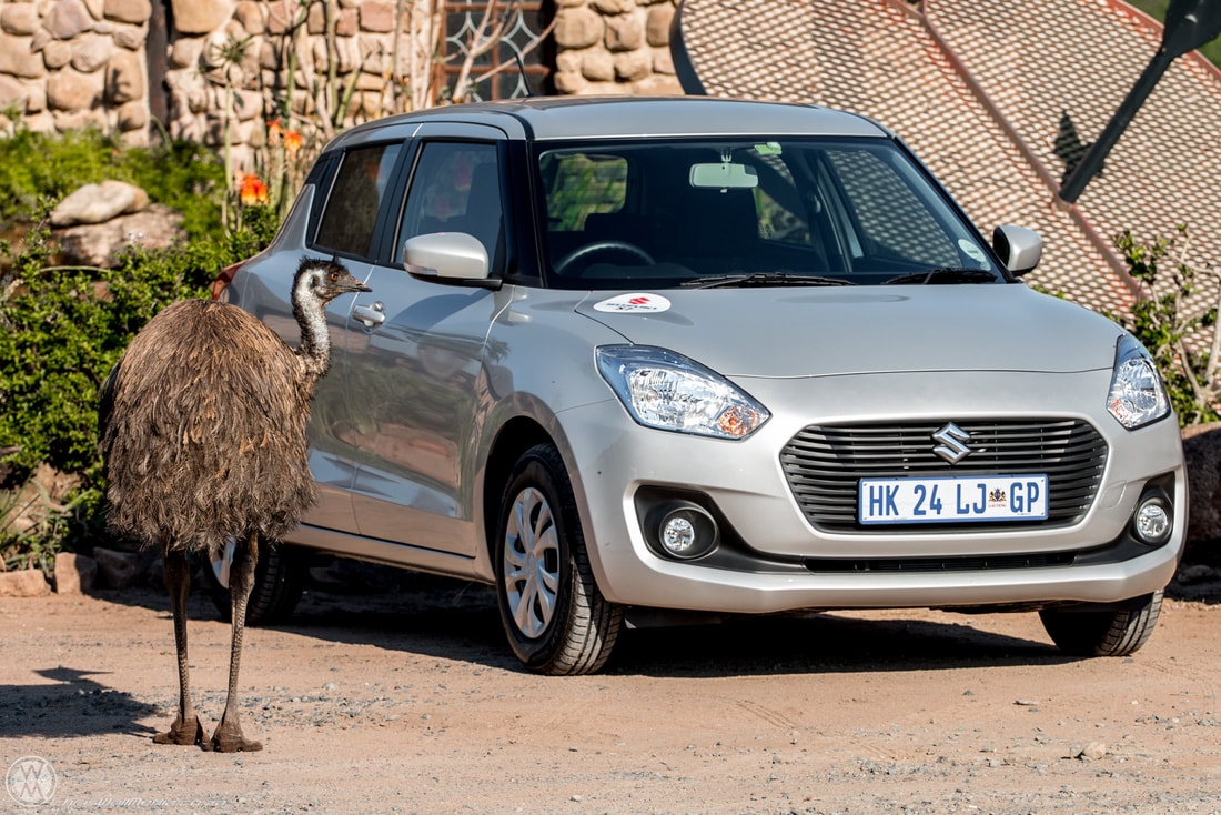 Suzuki Swift South Africa gives you all the right feels